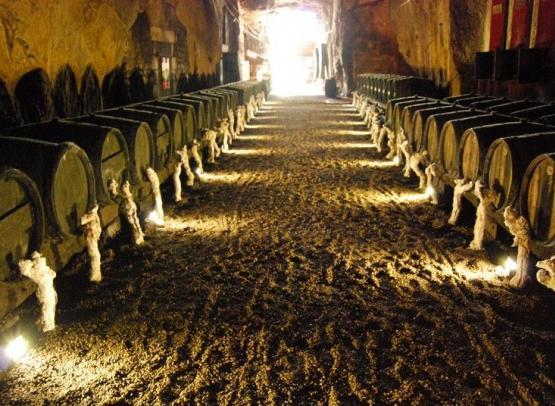 ACVL-Chinon-Cave-Monplaisir--2-