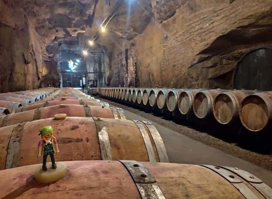cave-monplaisir2