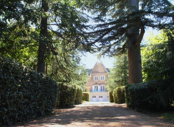 allee-du-chateau-de-la-guimoniere