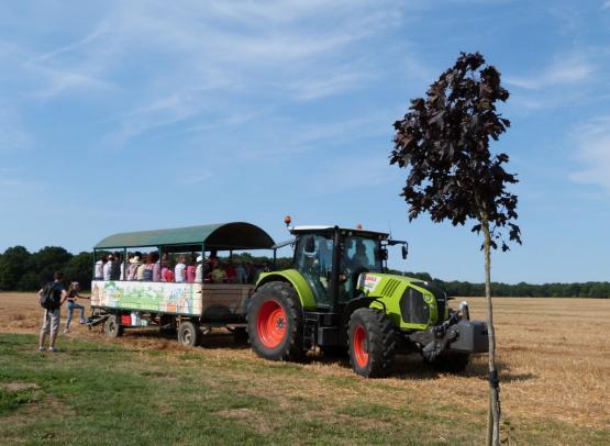 Tracteur remorque Ferme de Prunay