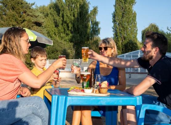 Camping Sites et Paysages les Saules-Cheverny-bar-amis