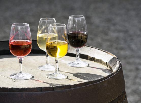 les_vins_d'Anjou_au_Musée_crédit Philippe Caharel