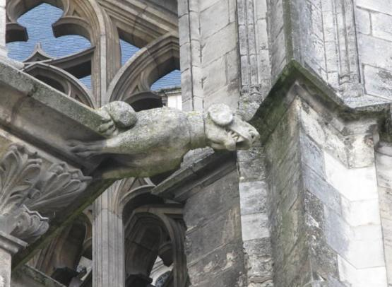 cathedrale sainte croix gargouille chien