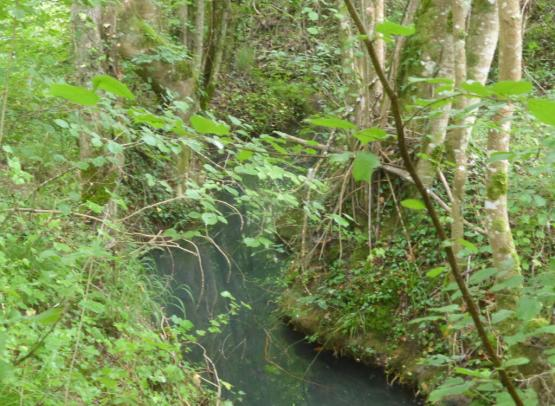Ruisseau de la Grosse Pierre