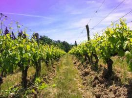 (1)domaine-de-montcy-jeux de piste-cheverny©Domaine-de-Montcy