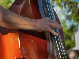contrebasse-musique-pixabay