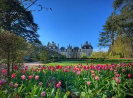 Tulipes-au-chateau-de-cheverny-Mir-Photos-ADT41--22-
