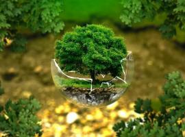 nature bulle