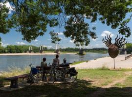 ©D.Drouet-2688 - la Loire à Vélo à Montjean sur Loire